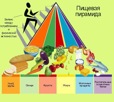правильное питание для похудения результаты с фото